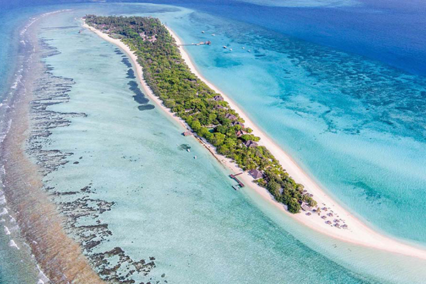 Maldive – Palm Beach